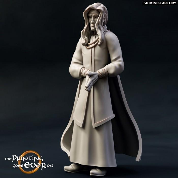 Cevenor des Chapter 9 - Elves of Brightwood créé par The Printing Goes On de 3D Minis Factory