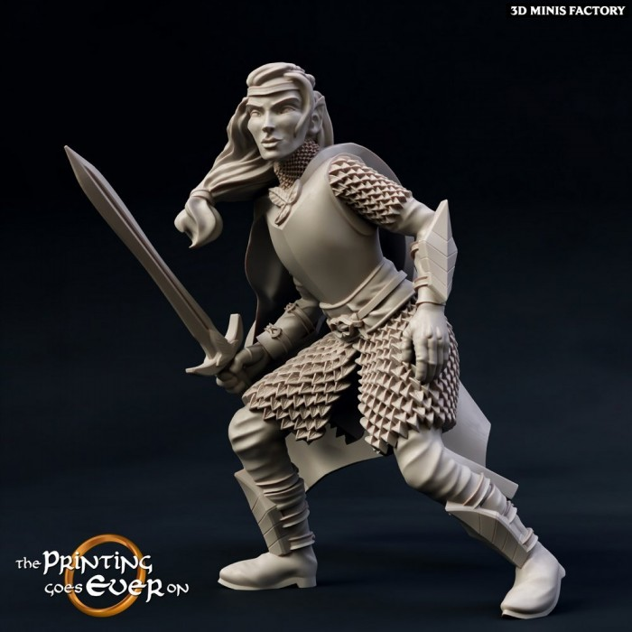 Brightwood Fighters - Modular - 2 variantes des Chapter 9 - Elves of Brightwood créé par The Printing Goes On de 3D Minis Fac...