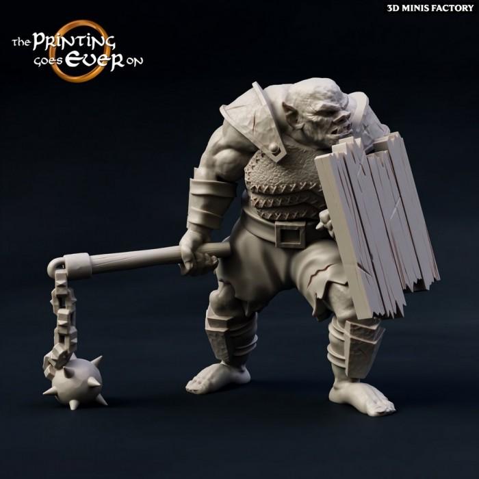 Orc-Fighter des Chapter 10 - Death of a Hero créé par The Printing Goes On de 3D Minis Factory