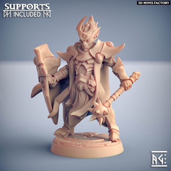 Ashen Alfar Priest - Modular E (male) des Ashen Alfar Inquisitors créé par Artisan Guild de 3D Minis Factory