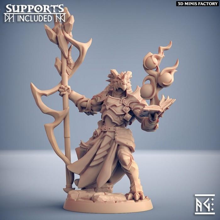 Scramax the Battlemage des The Dragonguard créé par Artisan Guild de 3D Minis Factory