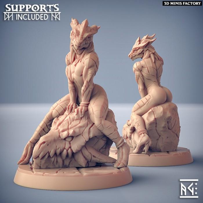 The Dragonguard Hero - Fantasy Pinup des The Dragonguard créé par Artisan Guild de 3D Minis Factory