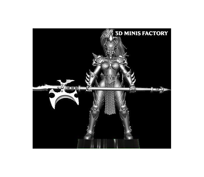 Dark Elf Princess 18 des Dark Elf créé par Avatars of War de 3D Minis Factory