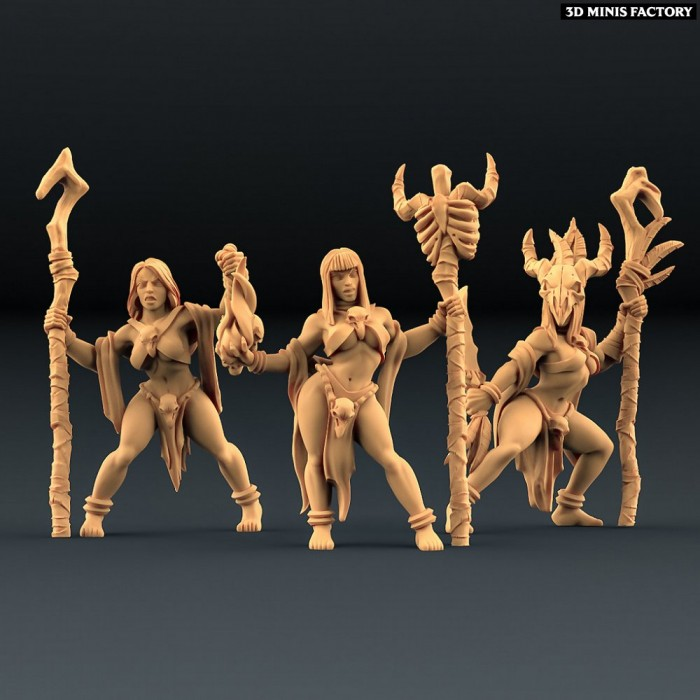 Blood Priestesses - 3 variantes des Amazons KickStarter créé par Artisan Guild de 3D Minis Factory