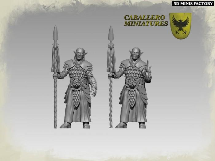 Elven High Warden - 2 variants des Wargames créé par Caballero Miniatures de 3D Minis Factory